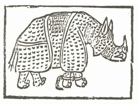 Nashorn.2