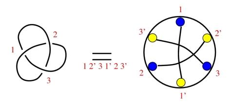 2cols-spin-3foil