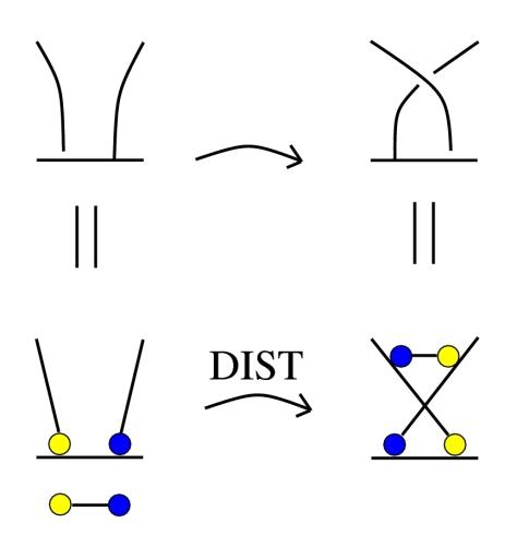 2cols-spin-dist-x